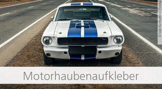 Top Autoaufkleberde Der Onlineshop Für Autoaufkleber